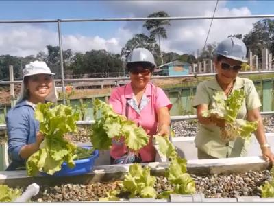 Mejorando la nutrición de los estudiantes de la Institución Educativa Aplicación Bilingue en el distrito de Yarinacocha