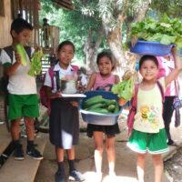 PS-salud-Niños desde la cosecha-585px