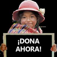 Donate kid - Peru (ESP)